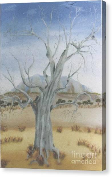 The Old Gum Tree Canvas Print by Debra Piro