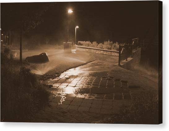 The Park At Night Canvas Print by Artist Orange