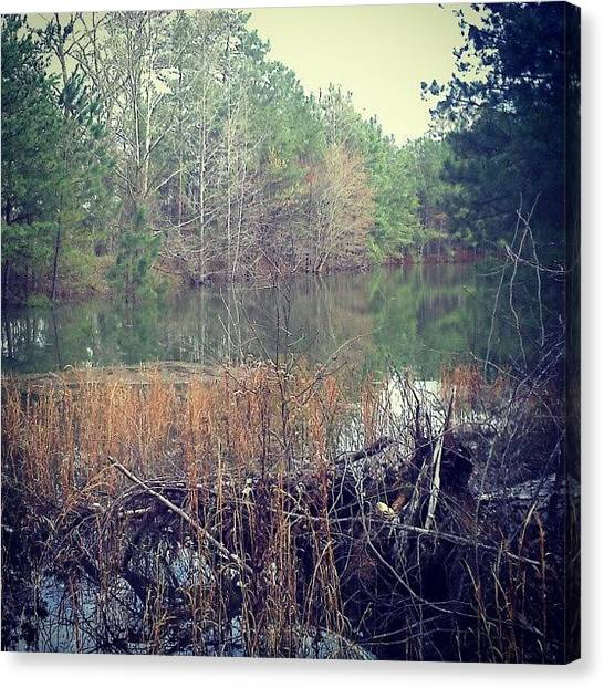 Swamps Canvas Print - The Pond by Micah Mulinix