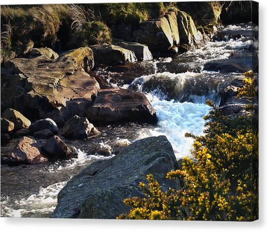 The River Caldew Canvas Print