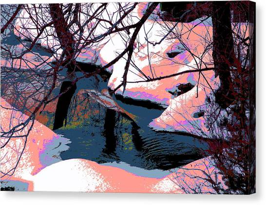 The Shades Of Winter Canvas Print by Shirley Mailloux
