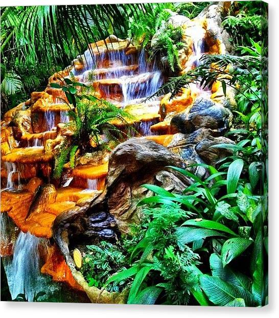 Jungles Canvas Print - The Springs In #costarica by The Fun Enthusiast