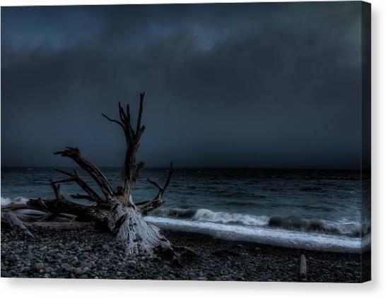 The Storm Canvas Print by Matt Dobson
