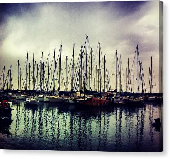Sailboats Canvas Print - The Tel Aviv Marina by Xenia Brudko