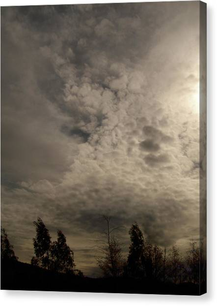 The Tree Cloud Canvas Print by Barbara Stirrup