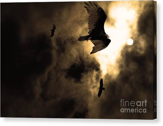 Undertaker Canvas Print - The Vultures Have Gathered In My Dreams . Version 2 . Golden by Wingsdomain Art and Photography