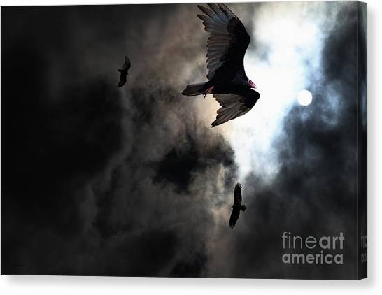 Undertaker Canvas Print - The Vultures Have Gathered In My Dreams . Version 2 by Wingsdomain Art and Photography