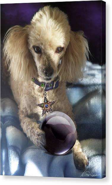 The Wizard Of Dogs Canvas Print