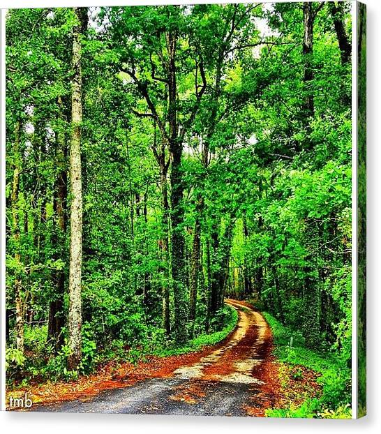 Dirt Road Canvas Print - There Are Times In Our Journey Through by Tawanda Baitmon