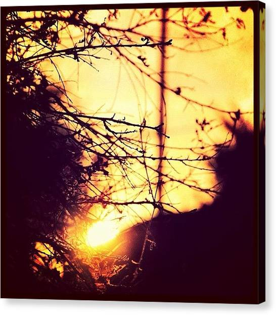 Power Canvas Print - There Goes The Sun... It's Alright by S Michelle Reese