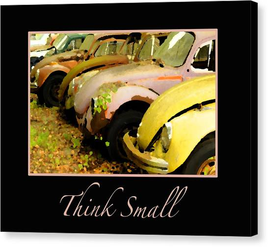Think Small Canvas Print by Nancy Greenland