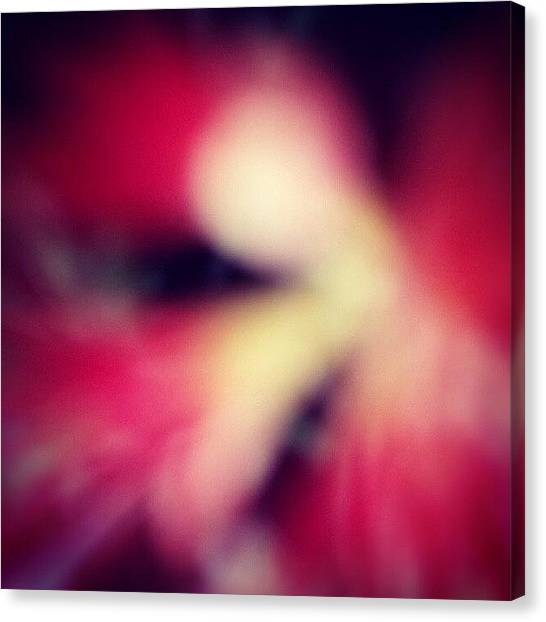 Tattoo Canvas Print - This Is A Blurred Flower Tooken By by Adam Snow