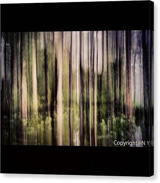 Everglades Canvas Print - This Is A Vertical Panning Shot, Gives by Naveen Yellappa