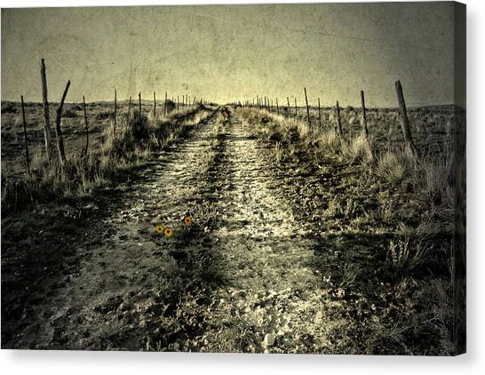 Three Flower Road Canvas Print