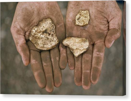 Amazon River Canvas Print - Three Gold Nuggets In A by National Geographic
