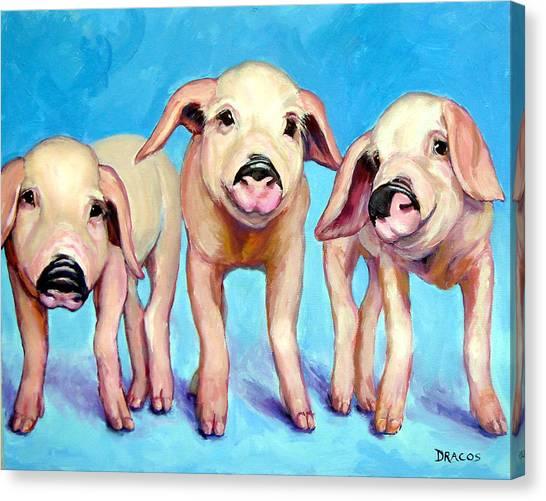 Pig Farms Canvas Print - Three Little Piggies by Dottie Dracos