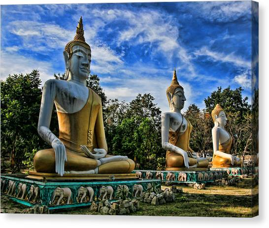Buddha Canvas Print - Three Of A Kind by Adrian Evans