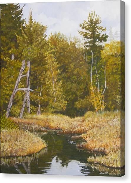 Three Turtles Lake Conestee Canvas Print