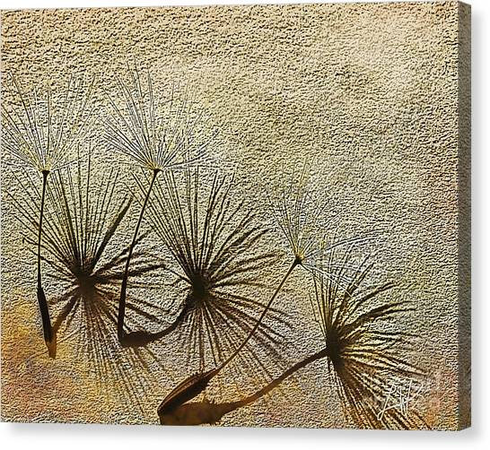 Three Wishes Canvas Print