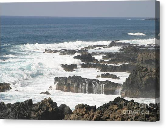 Tidal Falls Canvas Print by Anthony Trillo