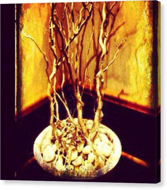 Llamas Canvas Print - #tiesto#ramassecas#piedras#rincon#llamas by Ramadassa A