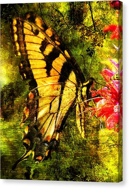 Tiger Swallowtail Butterfly Happily Feeds Canvas Print