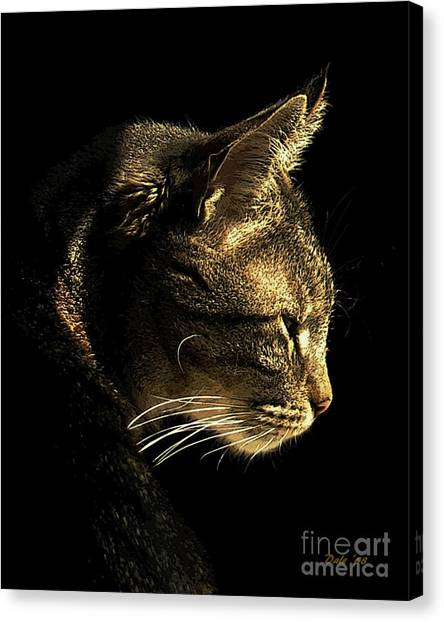 Tiger Within Canvas Print