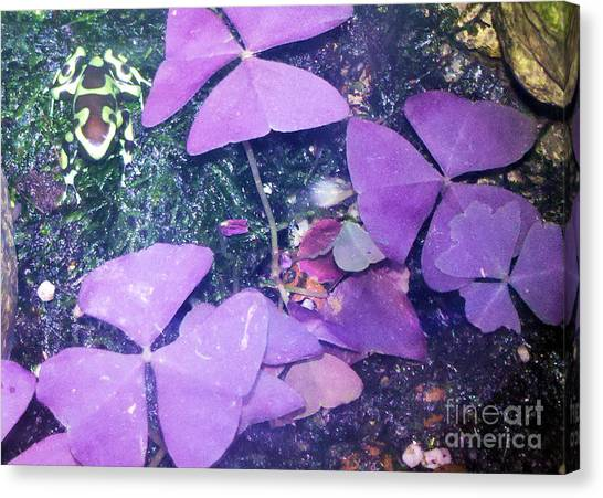 Tiny Frog Canvas Print