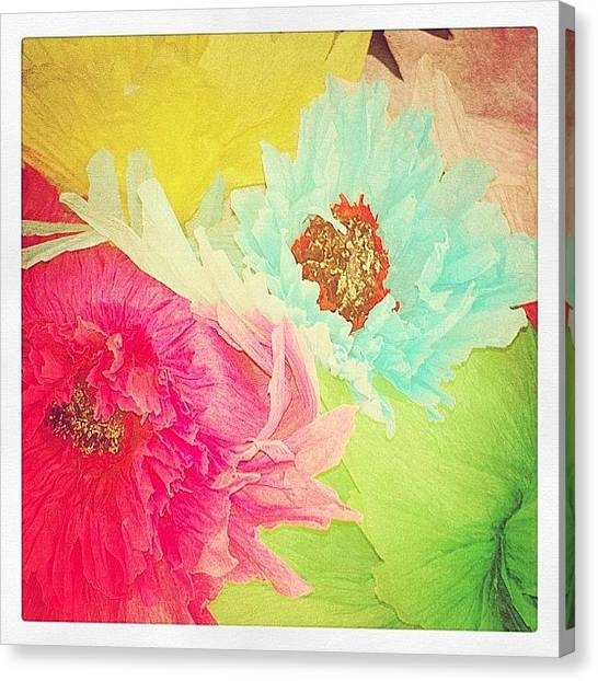 Papers Canvas Print - #tissue #paper #flowers #colorful #pink by Rachel Boyer