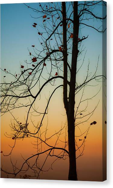 To The Morning Canvas Print