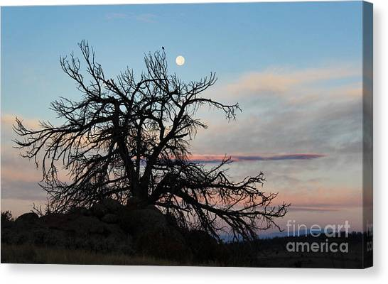 To The Tune Of A Blue Moon Canvas Print by Wesley Hahn