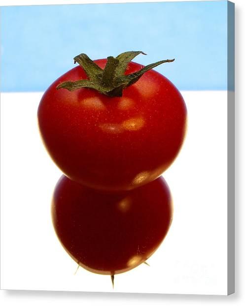 Tomato Canvas Print by Odon Czintos