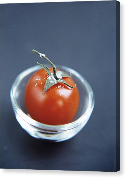 Tomato Canvas Print by Veronique Leplat