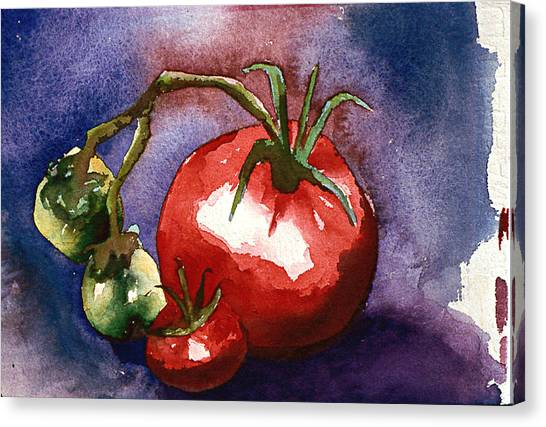 Tomatoes Canvas Print by Eunice Olson