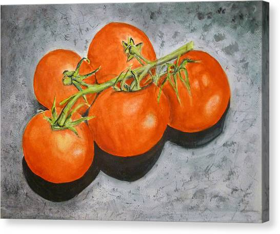 Tomatoes Canvas Print by Linda Pope