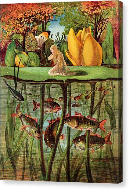 Goldfish Canvas Print - Tommelise Very Desolate On The Water Lily Leaf In 'thumbkinetta'  by Hans Christian Andersen and Eleanor Vere Boyle