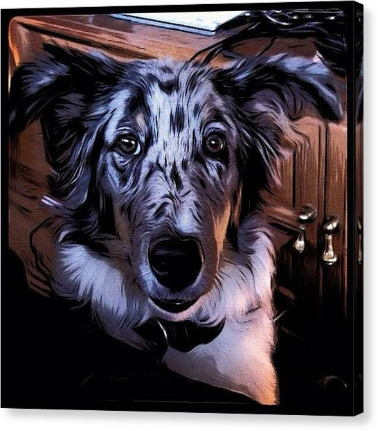 Puppies Canvas Print - Toon Paint Puppy by Dave Edens