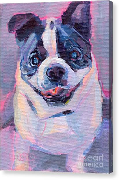 Boston Terriers Canvas Print - Toothless by Kimberly Santini