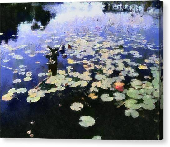 Torch River Water Lilies 3.0 Canvas Print