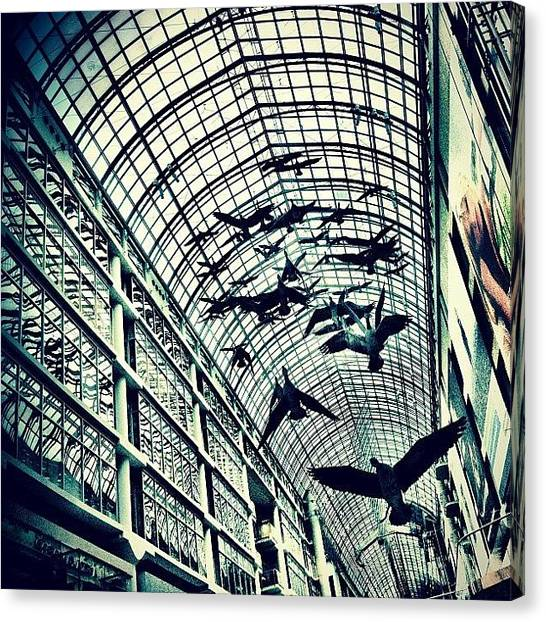 Geese Canvas Print - Toronto Eaton Centre by Christopher Campbell