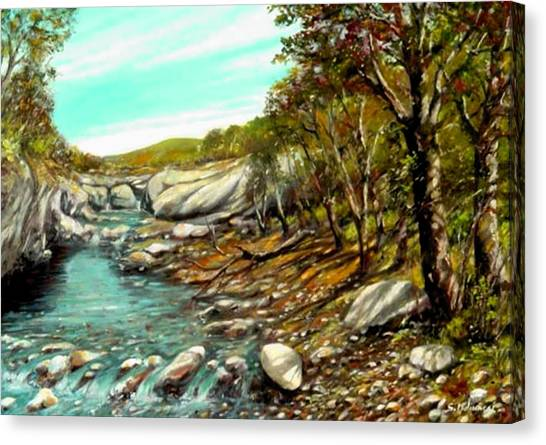 torrente Farma Canvas Print by Sandro  Mulinacci