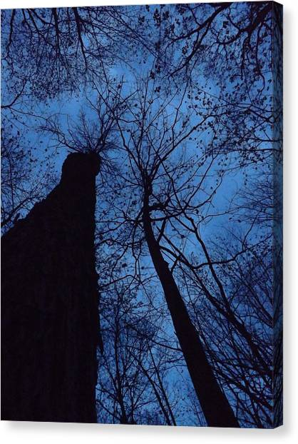 Towering Into The Night Canvas Print