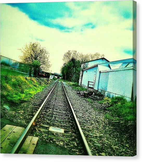 Foxes Canvas Print - #tracks #railroad #beautyiseverywhere by Rachel Fox Burson