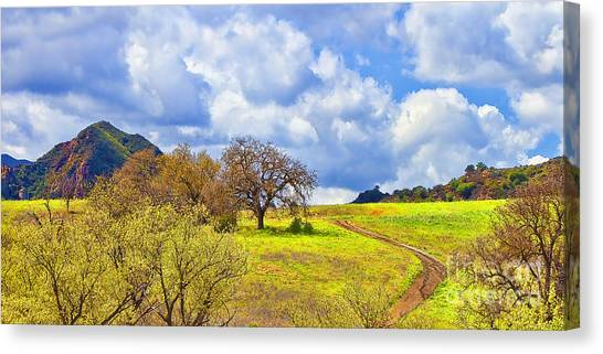 Trail To Nowhere Canvas Print