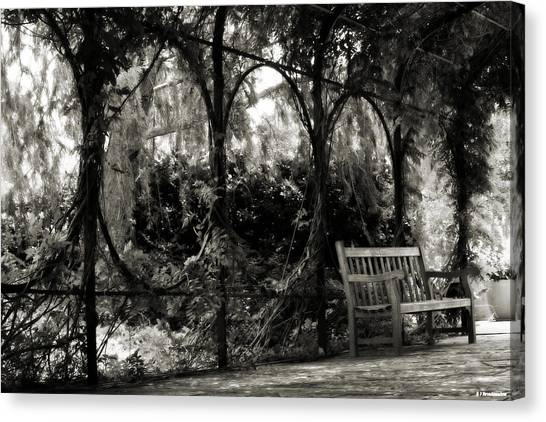Tranquil Leaf Covered Walkway In Black And White Canvas Print