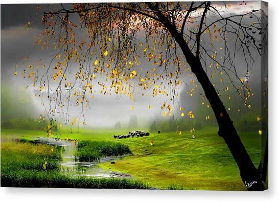 Tranquillity Canvas Print by Igor Zenin