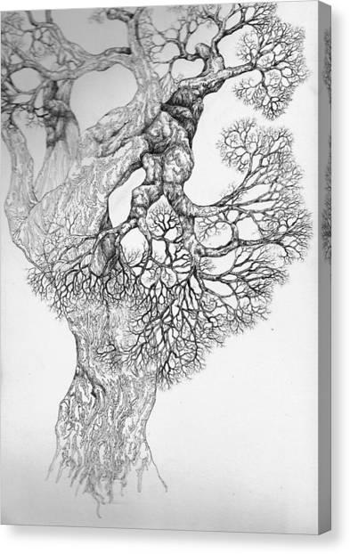 Tree 21 Canvas Print