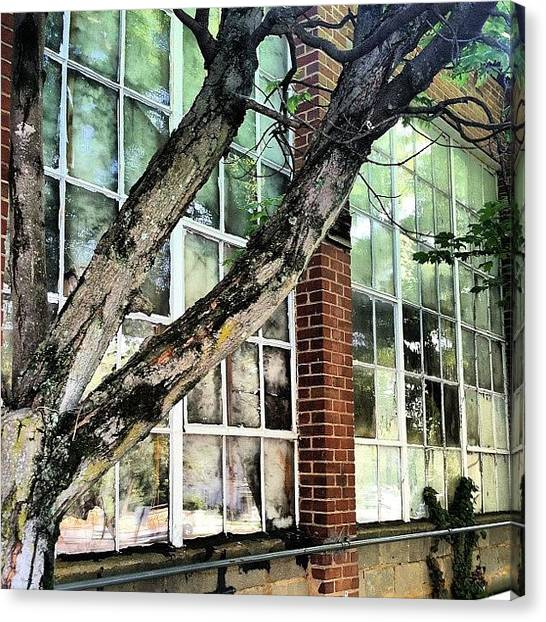 Factories Canvas Print - #tree #brick #factory #glass # by Jeff Summers