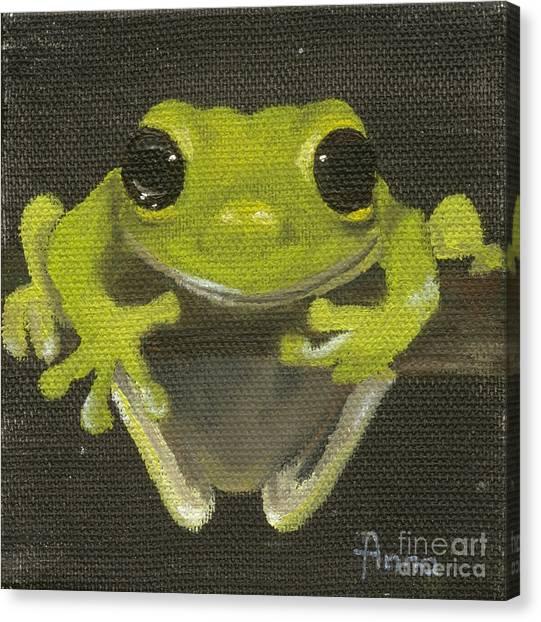 Tree Frog 2 Canvas Print