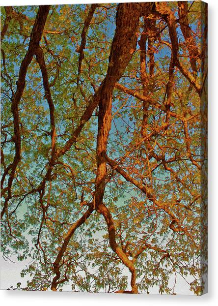 Tree Lightning Oil Painting Style Canvas Print